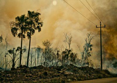 © Incendio Forestal